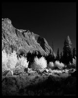 Paradise Valley IR by BrianWolfe