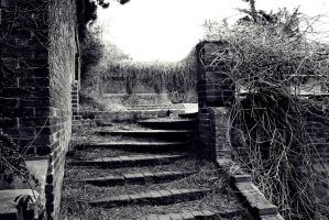 Decay by JSC48