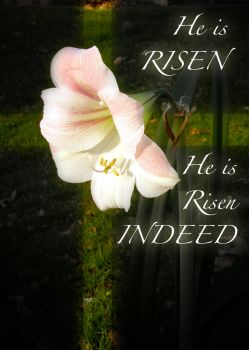 He is Risen Indeed! by andrewblood