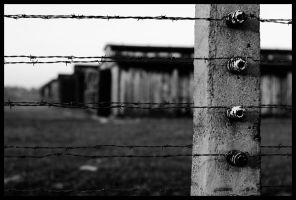 Birkenau by JamesBardolph