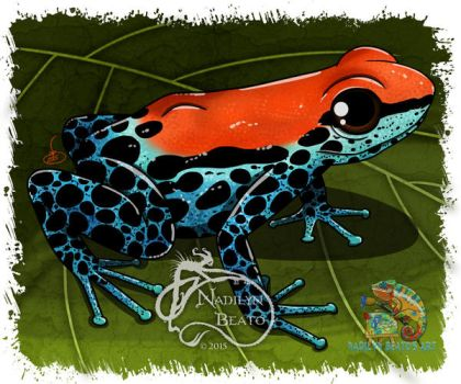 Red-backed Dart Frog by NadilynBeato