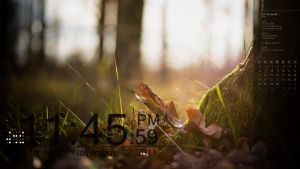 Nature Rainmeter by dalenasian