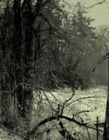 Sinister silence... by wolfcreek50