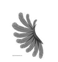 Transparent Black and White Wing by K1ku-Stock