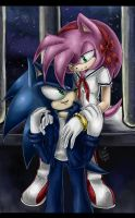SonAmy by LeonS-7