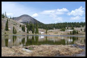 Medicine Bow National Forest 2 by AlexCphoto