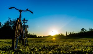 Summer Biking by Omniphyte