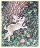 Jumping hare by Victoria-Poloniae