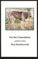 For the Consolation by RedShuttleworthPoet