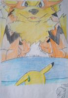 Arcanine and Pikachu by AliceBlack19