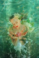 Water Lily by Holly6669666