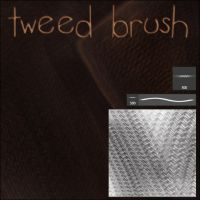 Tweed Brush by Trisste-stock-moved