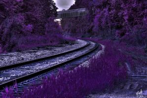 Train Tracks in the Woods (Spirit Day) by FreeCandy44