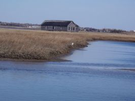 Old Barn On The Marsh by SumYungGa1