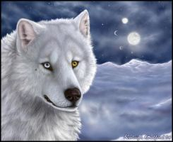 Wolf Entrance Realistic Meteor by outlaw-161