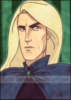 Lucius Malfoy by Todd-the-fox
