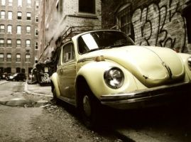 THE YELLOW BUG 2006 by mattthewpearl