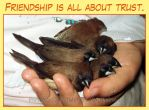 Friendship is all about trust by emmil