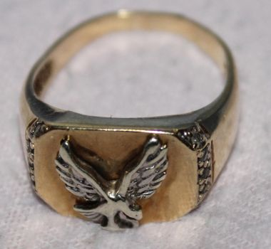 Eagle-Ring by Golden-Knight