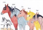 Avatar Horse Version - main characters (not all) by QatarShuiWan