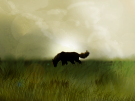 Lonely horse in the field by Speck--Of--Dust