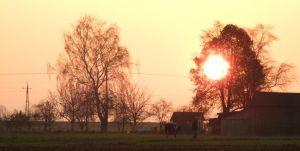 Sun and farm 2 by mateuszskibicki1