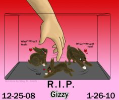 R.I.P. Gizzy by MidNight-Vixen