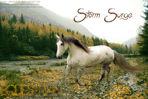 Stormsurgeequestrian by Death-On-Two-Legs