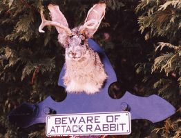 Beware the Jackalope by Zhon