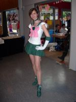 Sailor Jupiter by black---butterfly