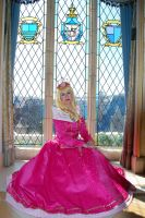Sleeping Beauty`s Castle (by the windows) by CelestialShadow19