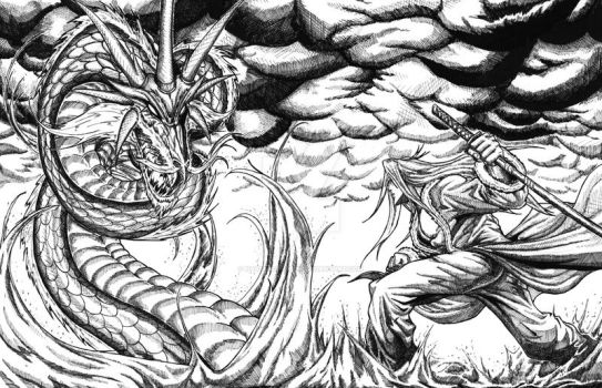 Battle of the Dragon Brothers by hassangraham