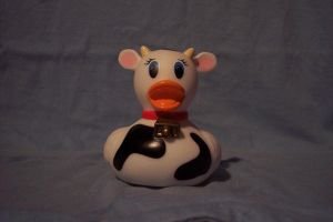 Cow Rubber Duck by sparklystock