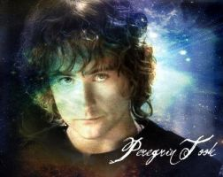 Peregrin Took by AbsoluteTook
