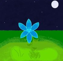 Original Art- Lily Flower At Night by Coraline15