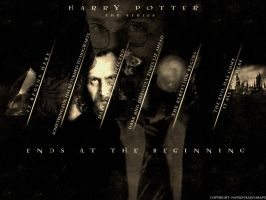 harry potter- the series by nvn5719