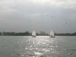 Sail Boats and Lake by AbstractWater