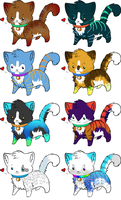 Kitten Point Adoptables II -WAITING- by CanineAdoptions