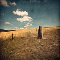 Queen Of The Stone Age by SebastienTabuteaud