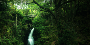 Aira Force by Nelleke
