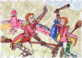Quidditch victory by MRZ-Tonks