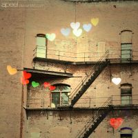 where is the love? by apeel