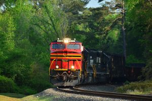 500th Deviation- 8114 Heritage Curve by CSX5344