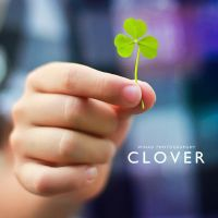 Clover by wihad