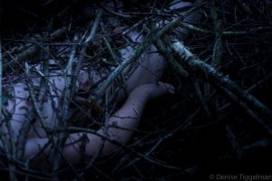 The branches (2) by Sshony