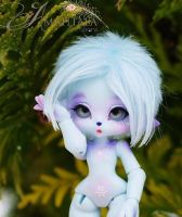 Enaibi Brimmbelle Winter Kitty by Atelier-Cynamon