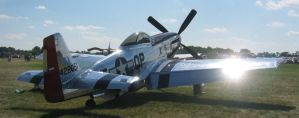 P51 Mustang 3 by ToeTag