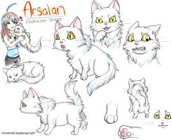 Arsalan Character Sheet by Sepla