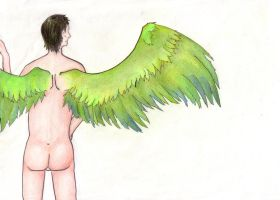 GO: Still my wings - coloured by cayra