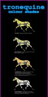 Tronequine Colour Shades Guide by RainbowFountains